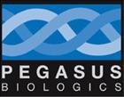 pegasus_logo2.jpg