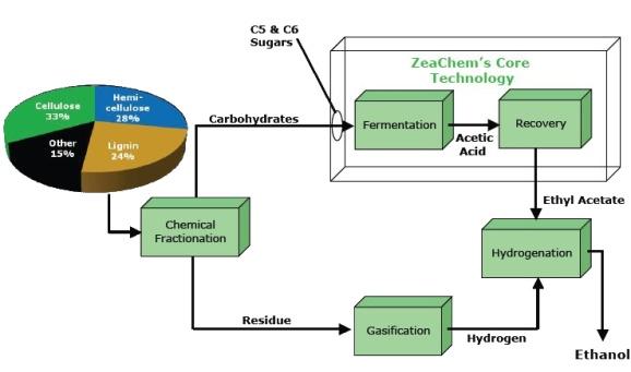 Optimal Allocation of Lignocellulosic Biomass Feedstocks ...