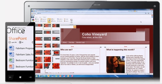 Image (1) office-365.jpg for post 254902