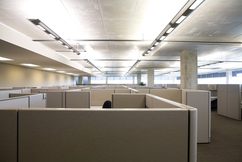 Photo of a cubicle farm