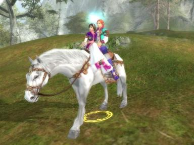 China's Perfect World is an online game similar to World of Warcraft