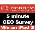 Dorsey & Whitney Survey