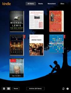 Kindle-iOS-1