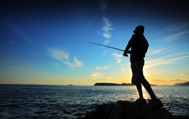 ss-betabait-fishing