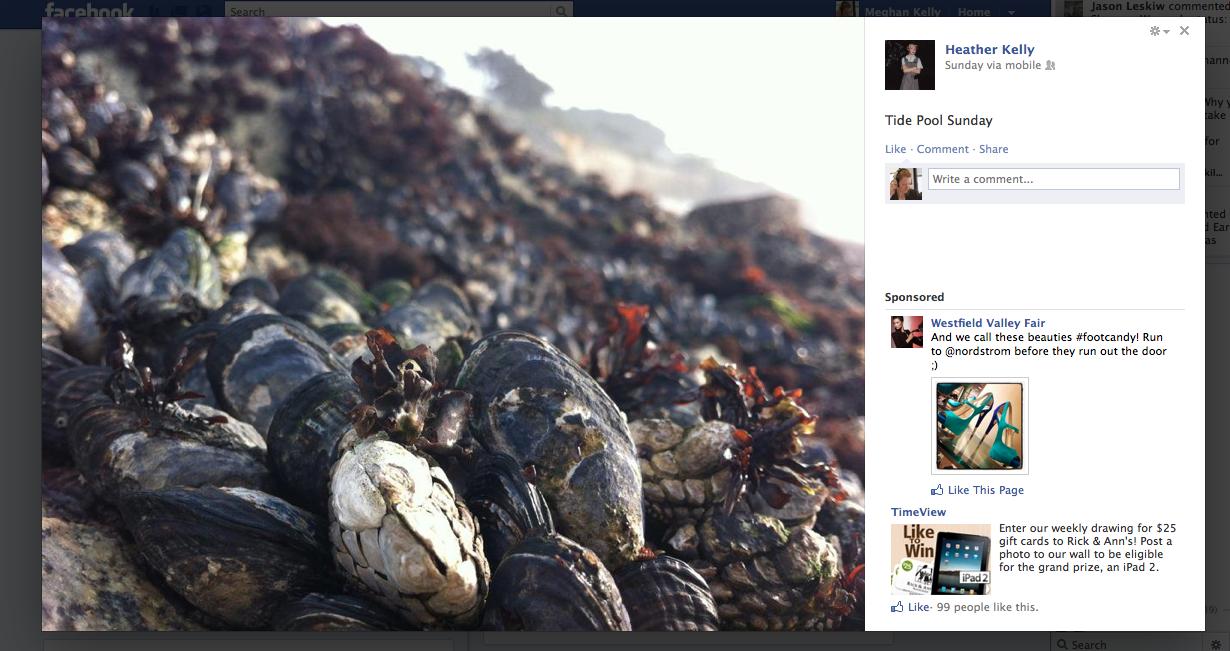 Facebook lightbox 3