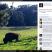 Facebook lightbox 2