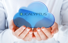 ss-eucalyptus-funding-open-source