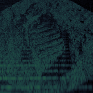 Fez - Footprint