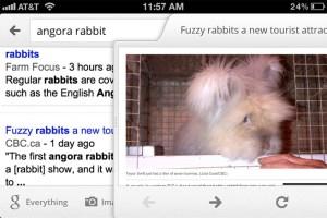 Google Search iPhone app slider