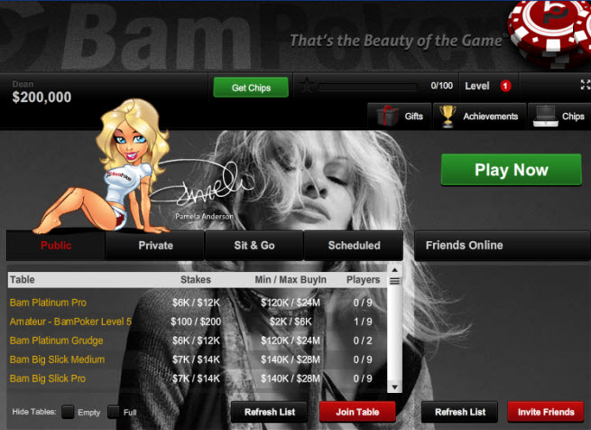 Pamela Anderson takes on Zynga with BamPoker gamePamela Anderson takes on Zynga with BamPoker game - VentureBeat - 웹
