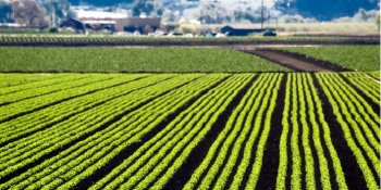 Funding daily: $17M promises to help mine data for farmers