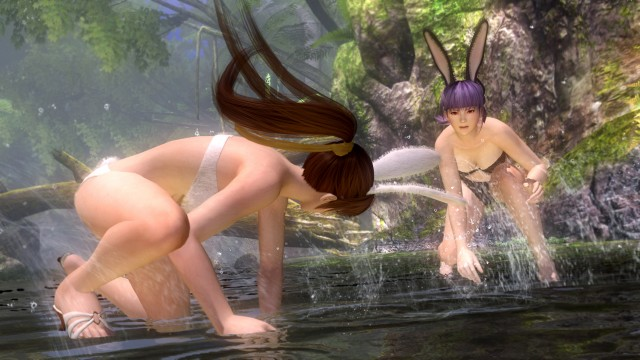 Dead or Alive 5 bunny outfits