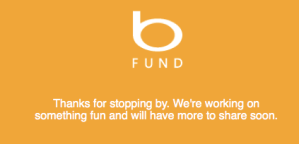 Screenshot of the Bing Fund placeholder website