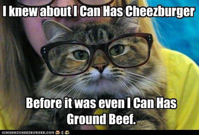 cheezburger-pic