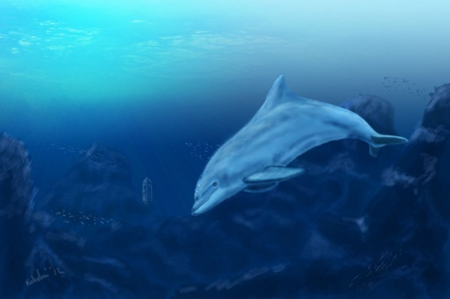 Ecco the Dolphin by Blackdragon21