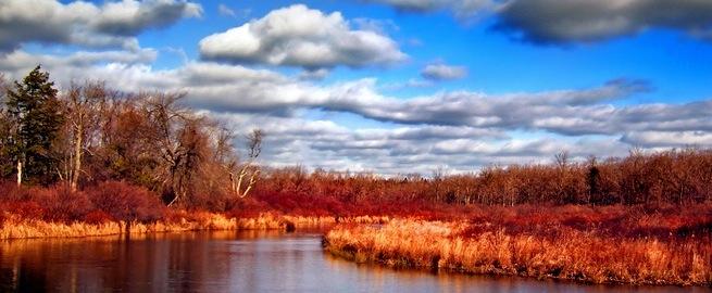 flickr-clouds-paas