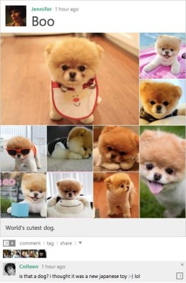 My post on Boo, created with images from Bing search results.