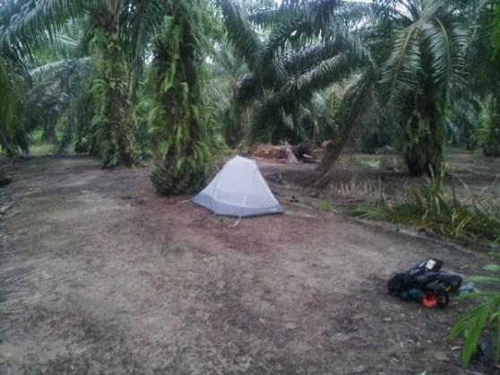 winston camping