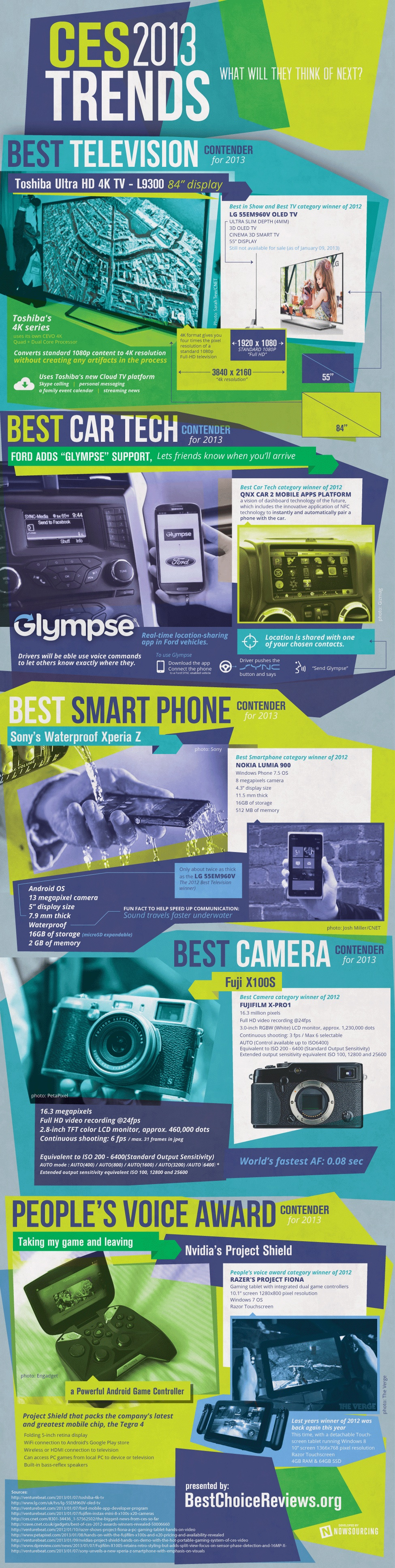 2013 CES Trends infographic