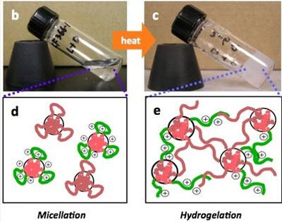 ibm nanomeds 2