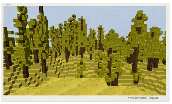 A forest in Voxel
