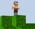 A Minecraft skin