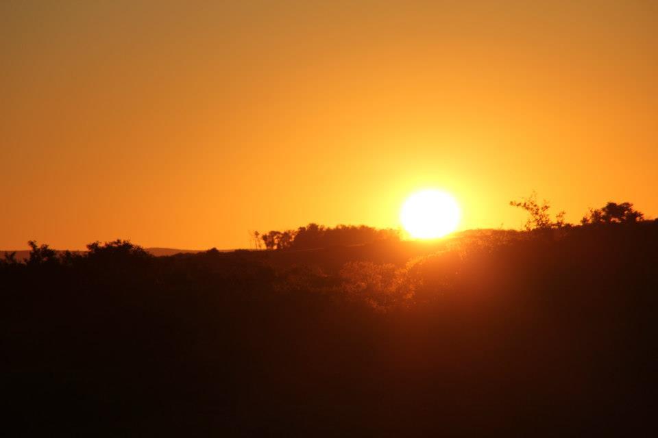 africa dawn