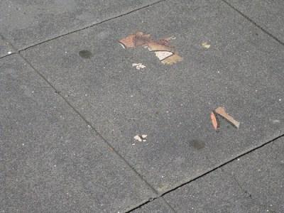 Ingrid on the sidewalk.