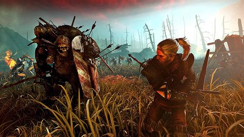 Witcher 2 combat