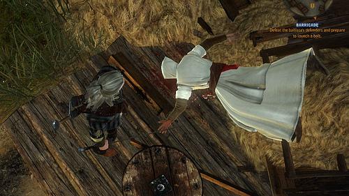 Witcher 2 Assassins Creed