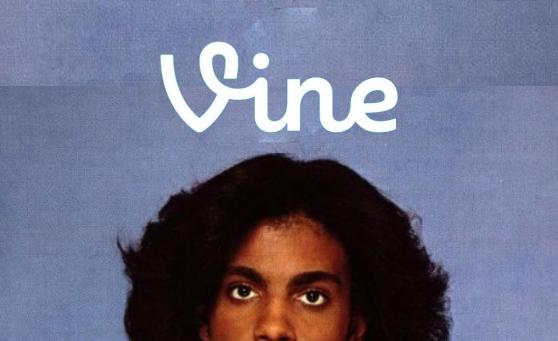 prince-vine