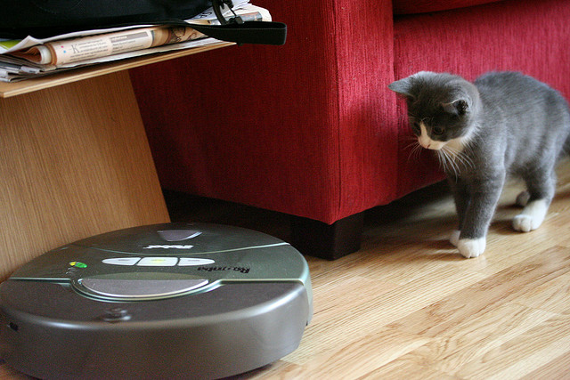 Do you think of a Roomba when you envision a smart robot?