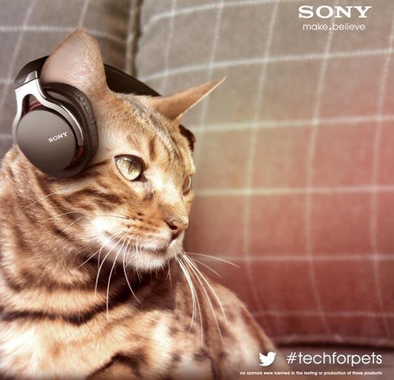 sony-pet-tech