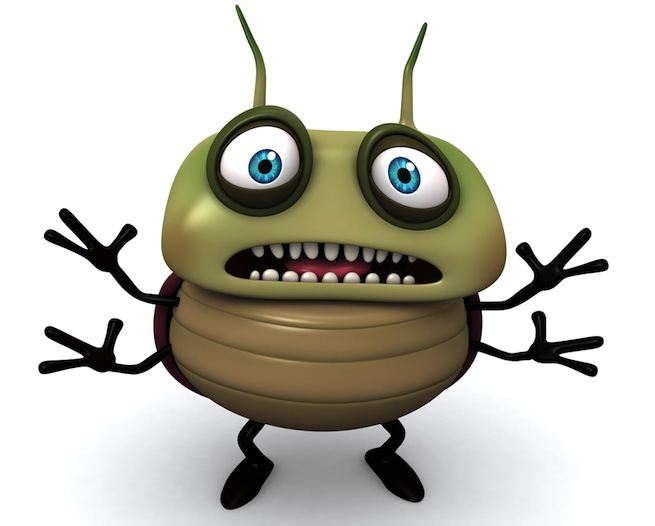 scared bug