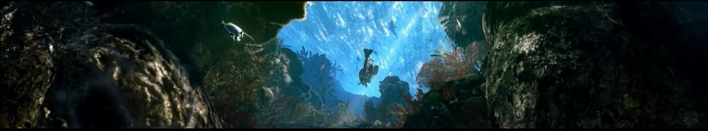 gorgeous underwater scene