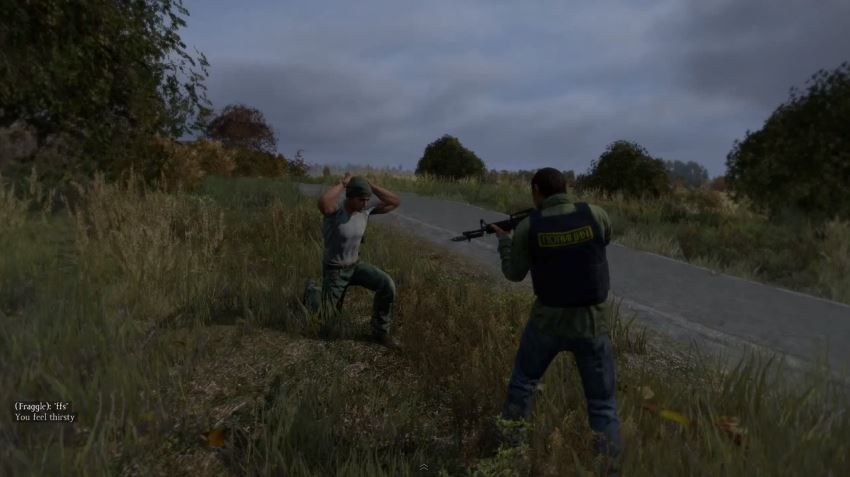 The DayZ Standalone game based on the DayZ zombie mod for Arma II.
