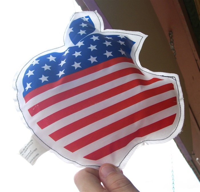 An Apple-USA logo, made in China.