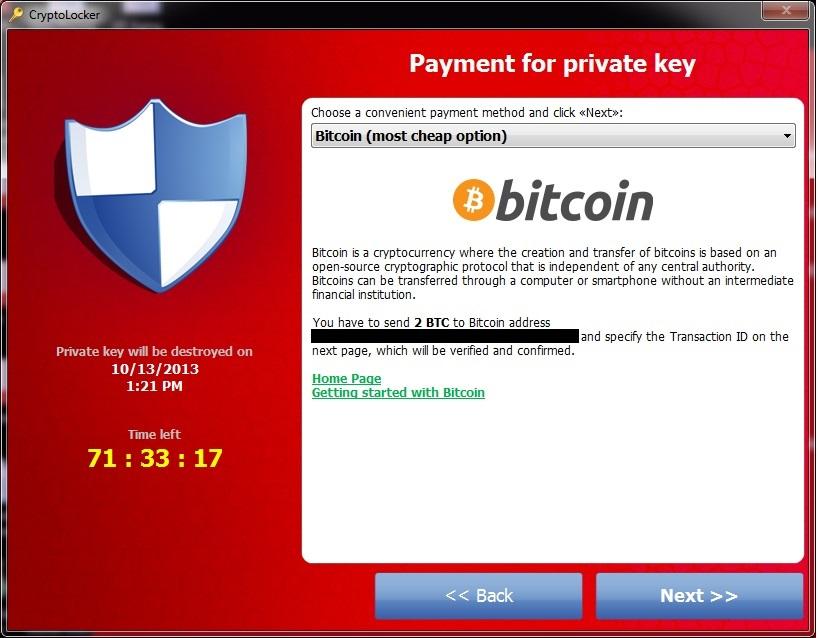 Choice Succulents Exchange Bitcoin Moneypak