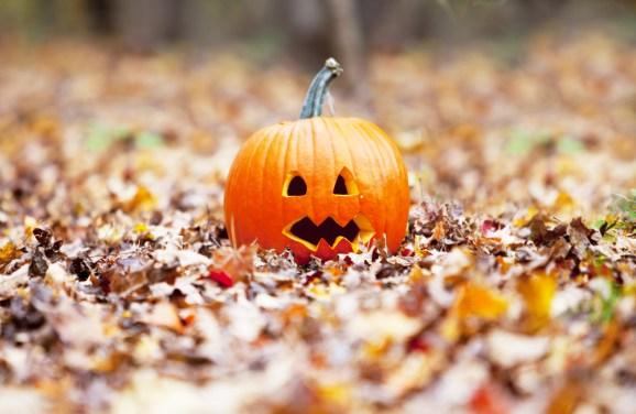 fall jack-o-lantern