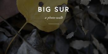 Photo-bloggers: Exposure will make all your design dreams come true