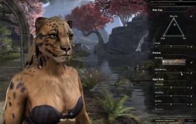 Elder Scrolls Online character screen