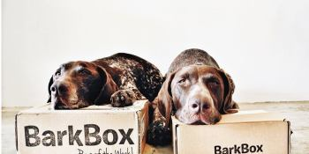 Obsessed with your dog? BarkBox releases photo-sharing forum for pet owners (exclusive)