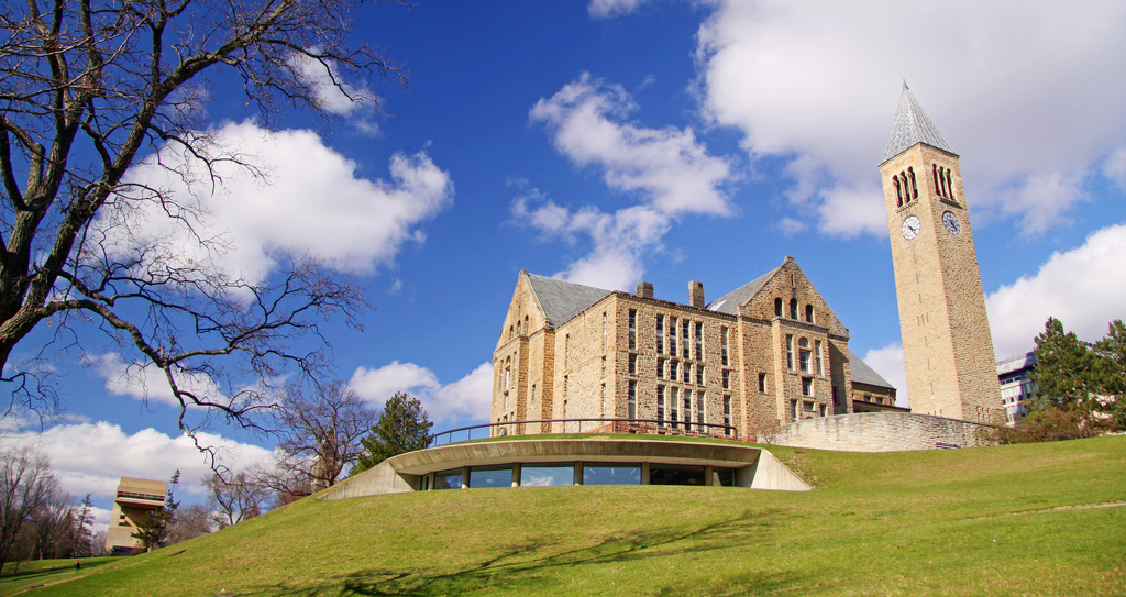 Interview With Ceo >> Cornell launches online executive training program to edge ...