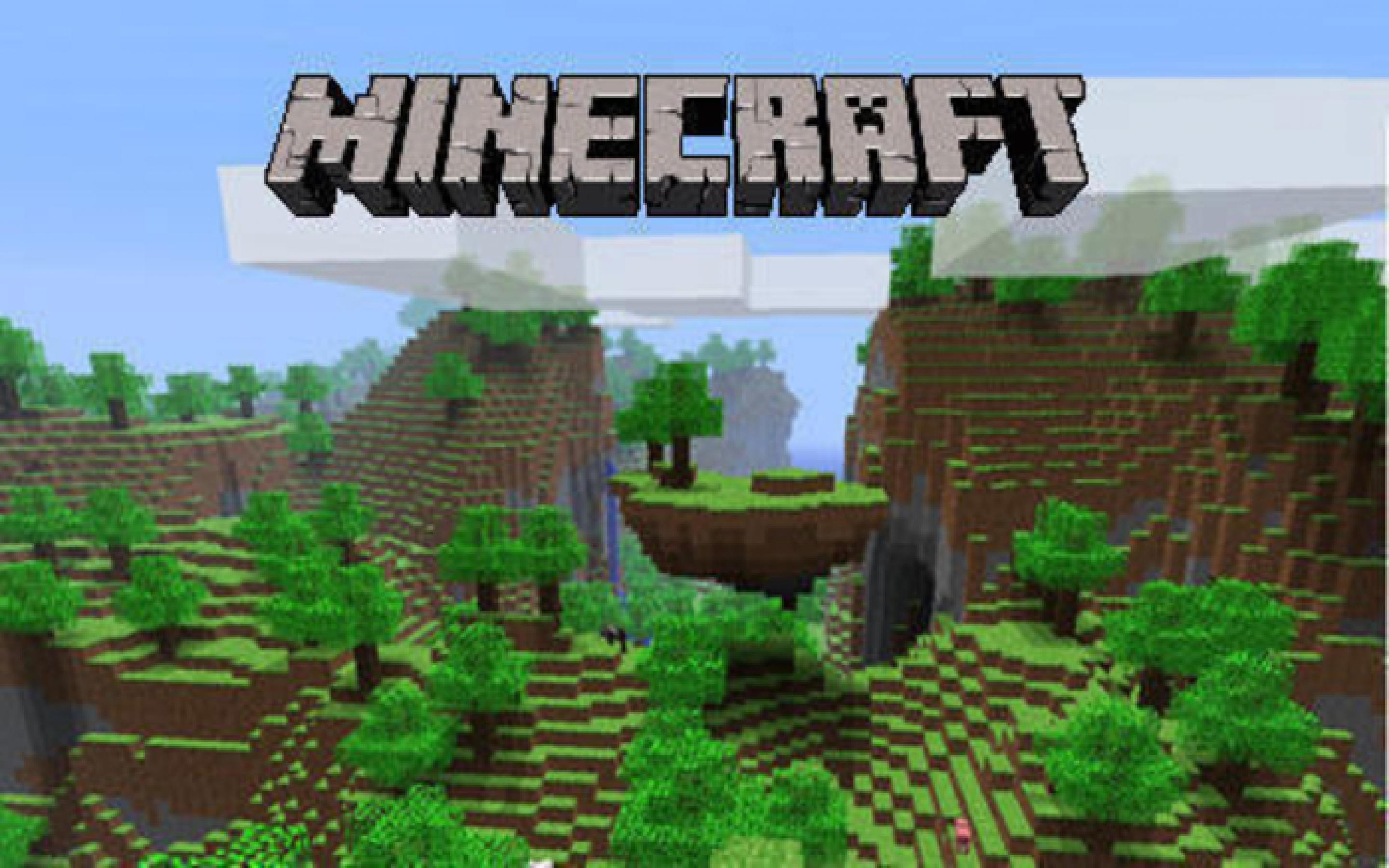 Turkey's 'family' ministry wants to ban Minecraft -- just