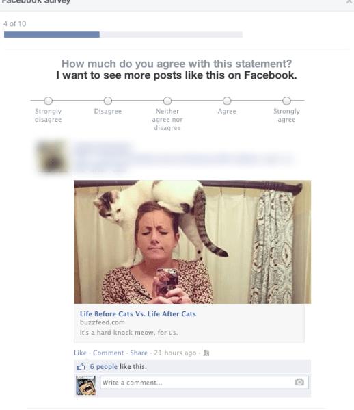 facebook-survey-buzzfeed
