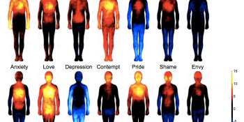 These heat maps reveal where we feel love, anger, shame & sadness on our bodies