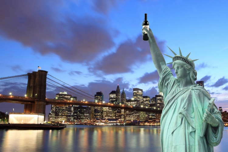 A rare glimpse of the Statue of Liberty partying in front of the Brooklyn Bridge.