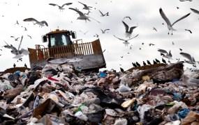 gargage dump landfill