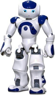The NAO robot