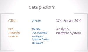 "The products and services that make up Microsoft's ""data platform."""